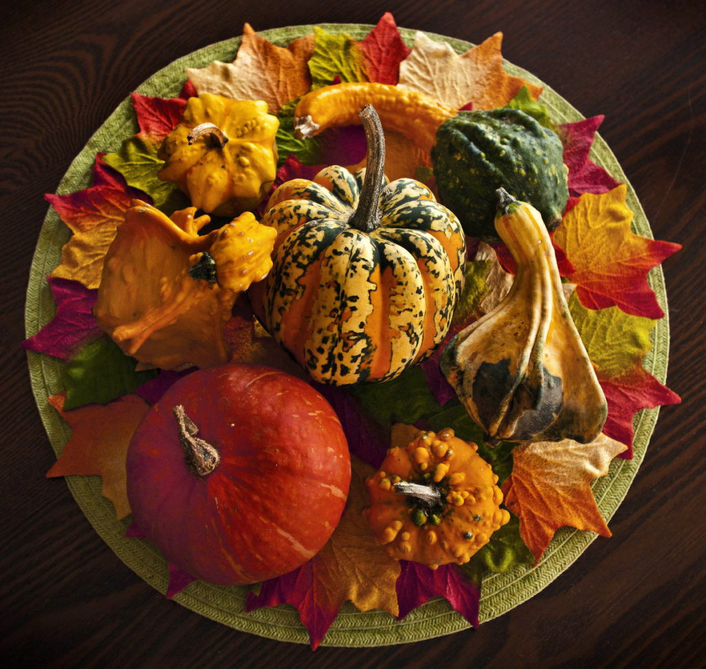 Autumn Centerpiece with a selection of gourds and small pumpkins