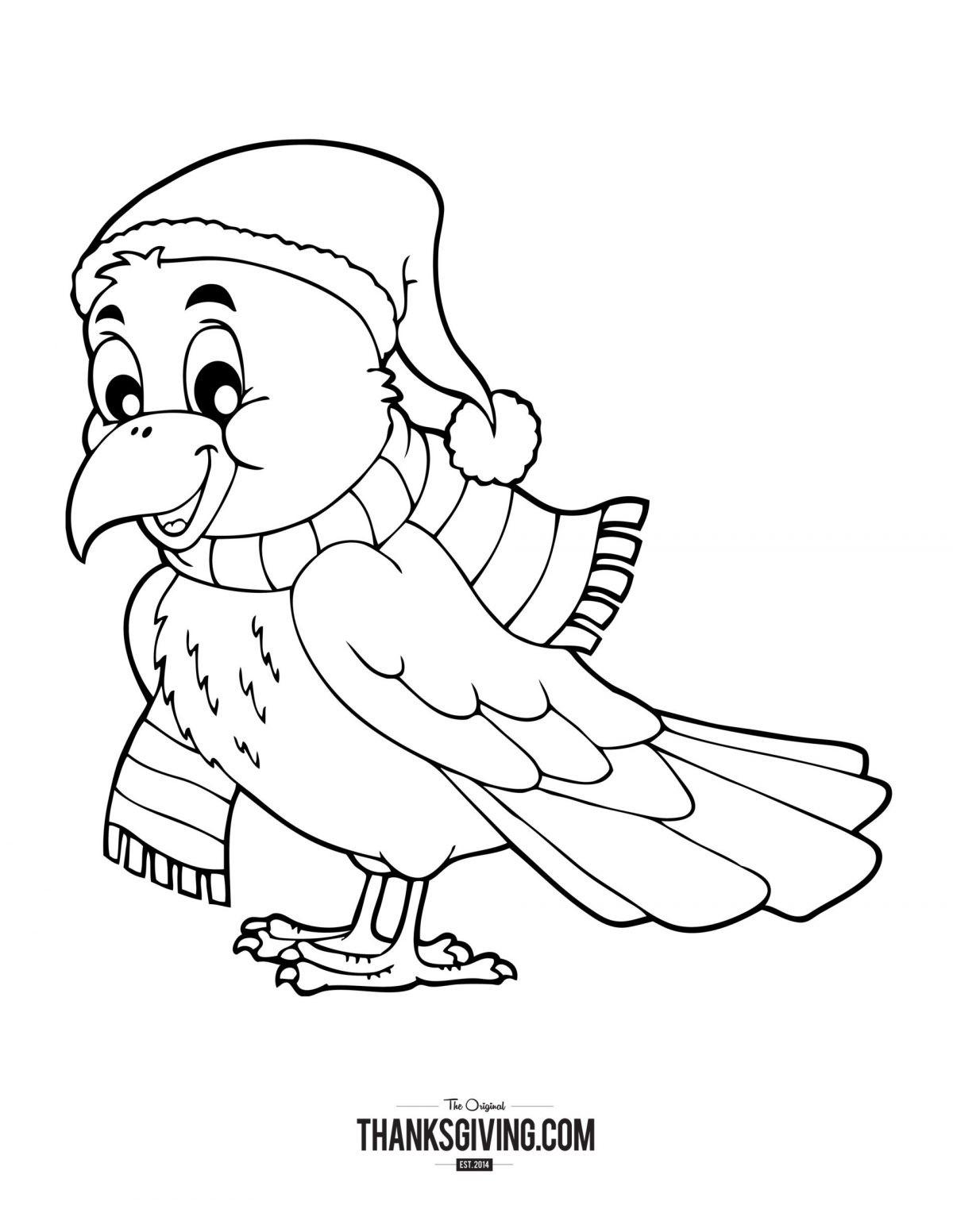 Cozy Bird