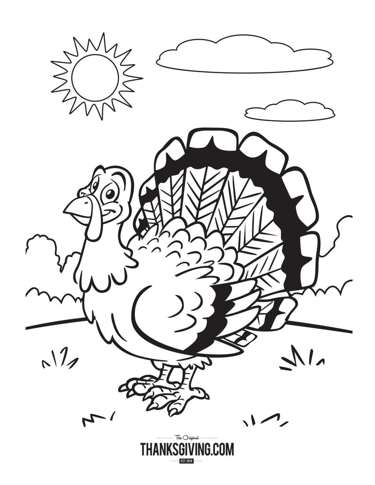 Sunny Turkey