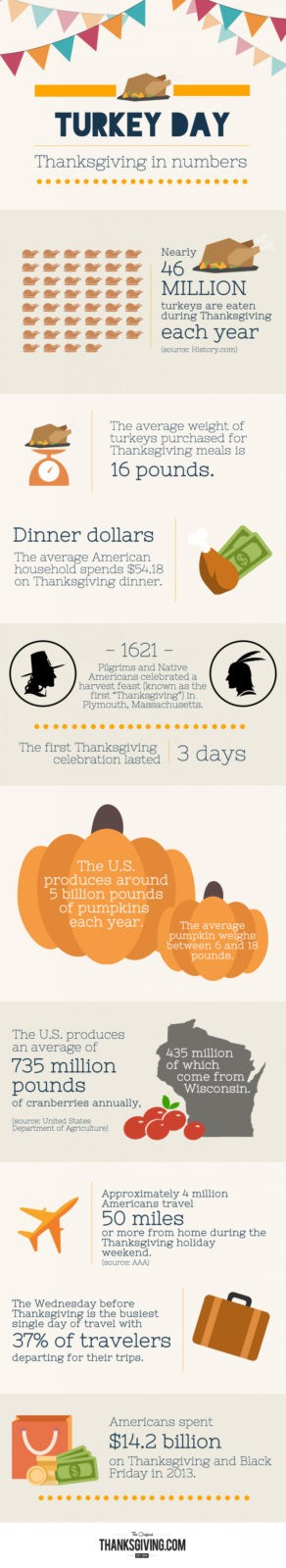 Thanksgiving in Numbers Infographic