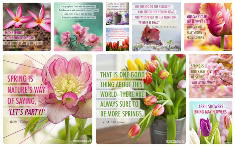 10 bright and happy spring cards to share