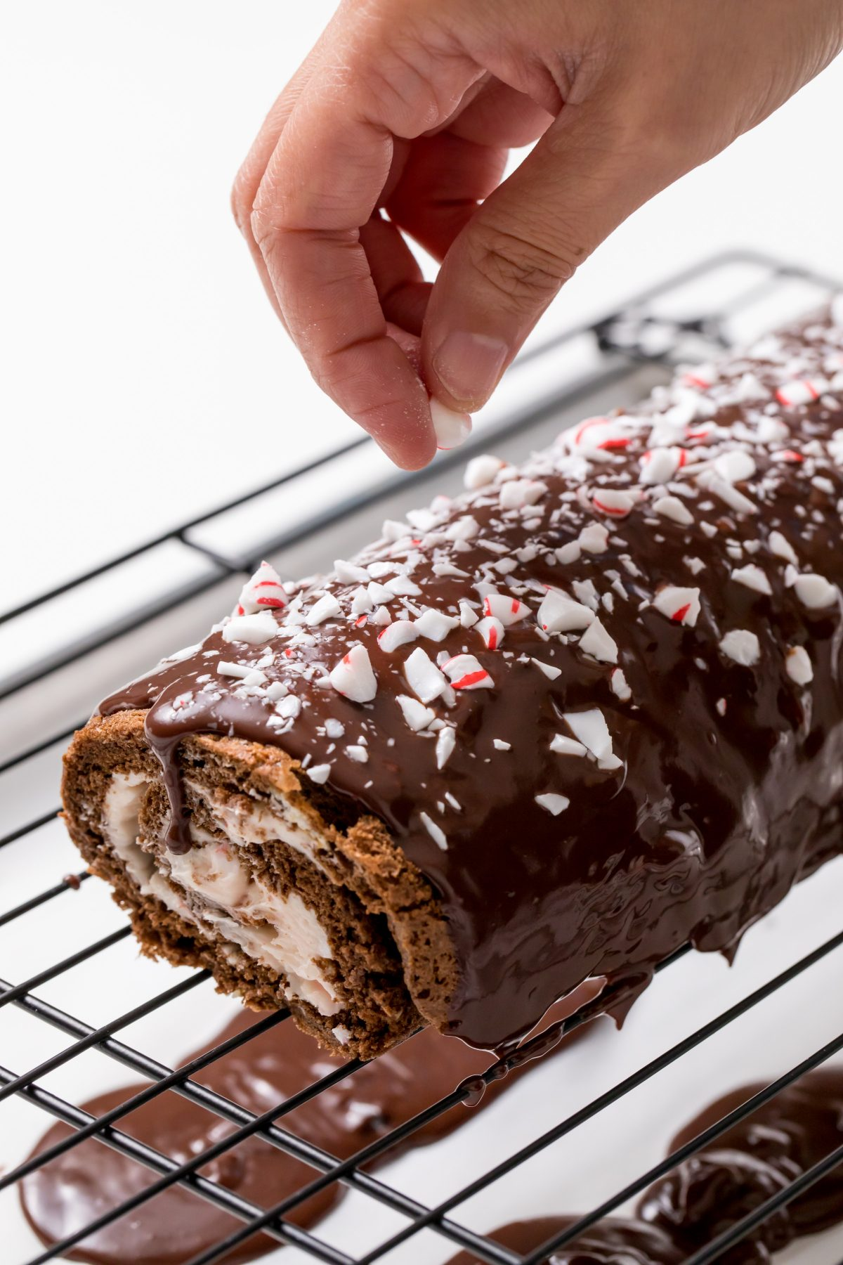 5D4B5958 - Chocolate Peppermint Cake Roll - Garnish the cake with crushed peppermint candies