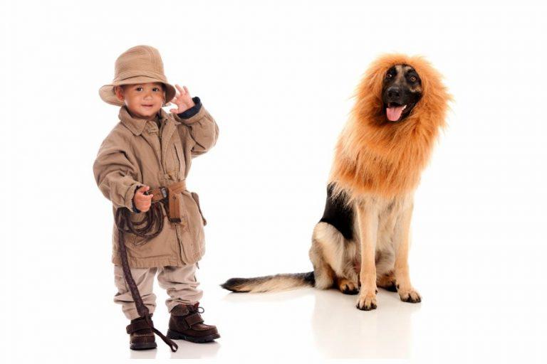 best-pet-halloween-costumes-dog-lion-1