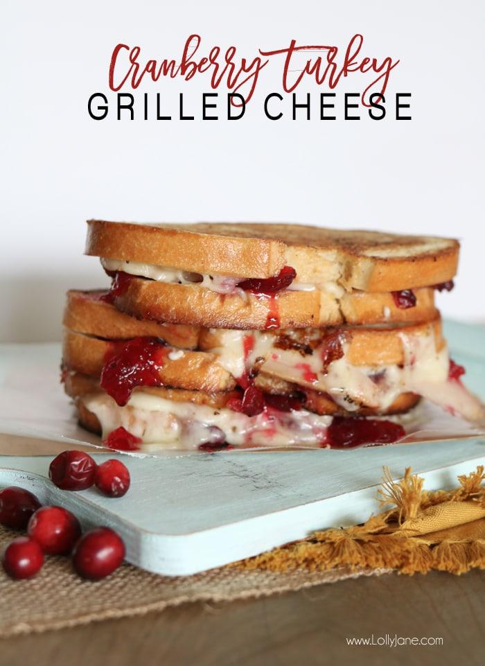 cranberry-turkey-grilled-cheese-sandwich