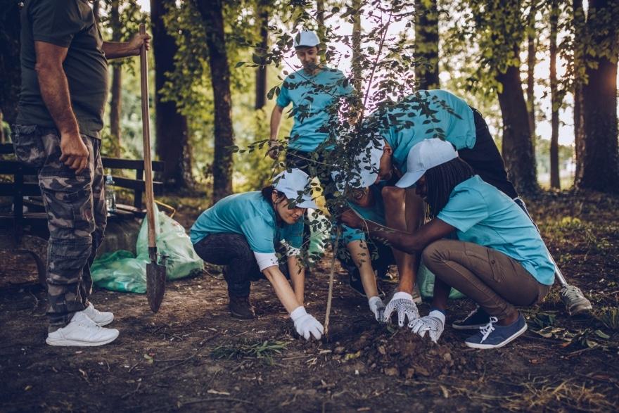 Weekend activities that don't involve drinking people volunteering