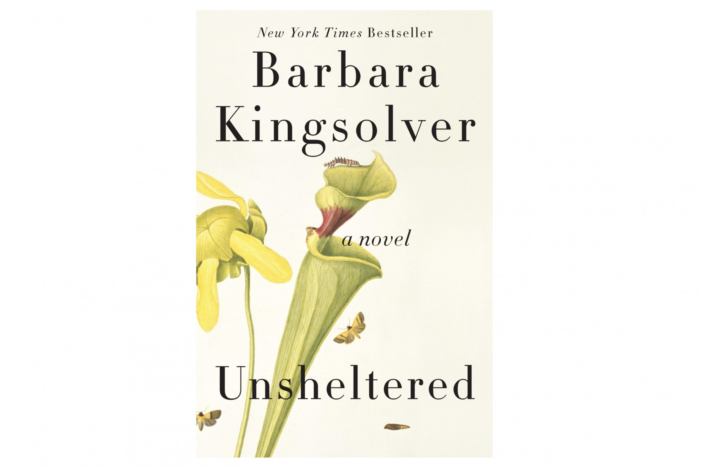 Books to read to kick your New Year off right 'Unsheltered'