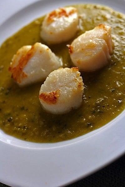 scallops-in-pea-sauce