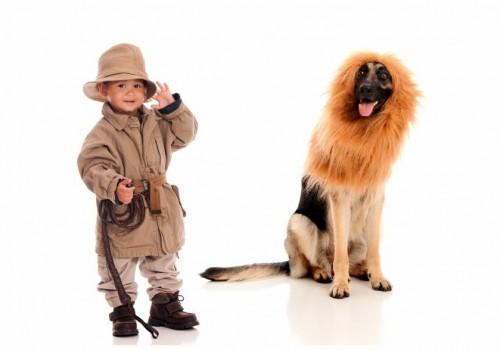 Best pet costume ideas for Halloween 2018